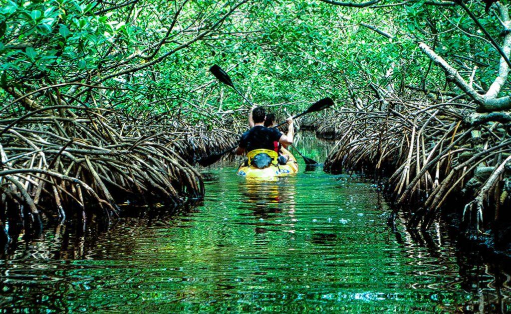 baratang island pic credit: thrillophilia